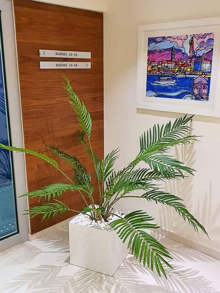 Umjetne Biljke Hodnik