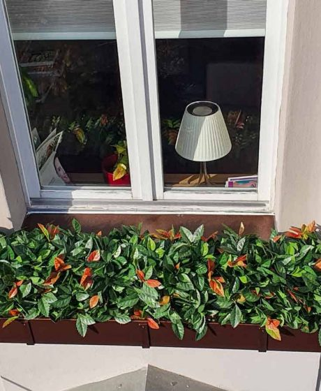 Umjetne biljke fotinja